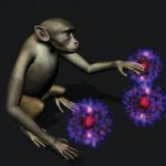 : Implantes cerebralesmonkeys brain stimulation