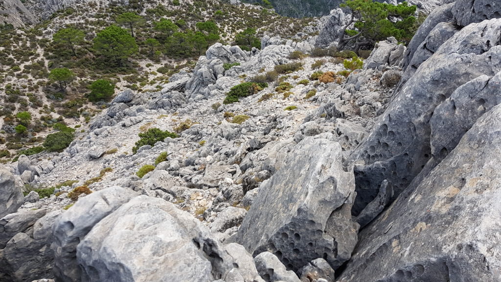 Ruta al Cerro Cisne