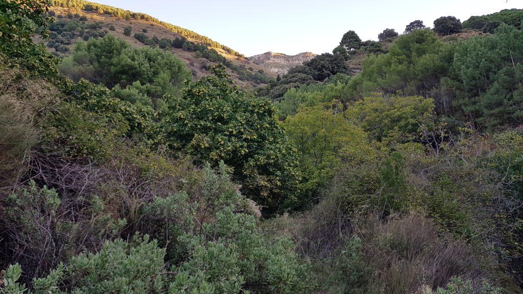 Ruta La Chapa y Malascamas