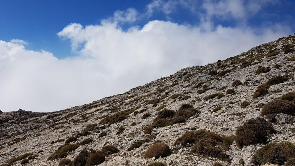 Ruta la Maroma y Almanchares