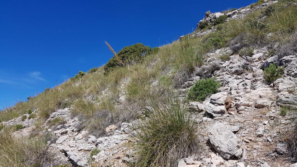 Hacia la roca en lo alto