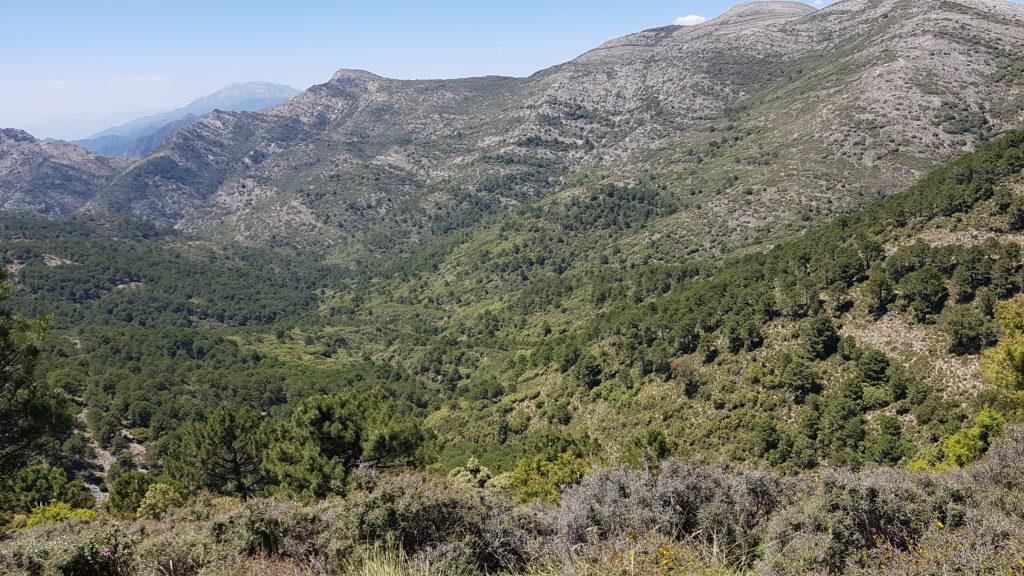 Atravesando el Cerro del Barco