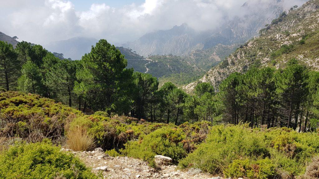 Vistas del descenso desde Collado Cacharro