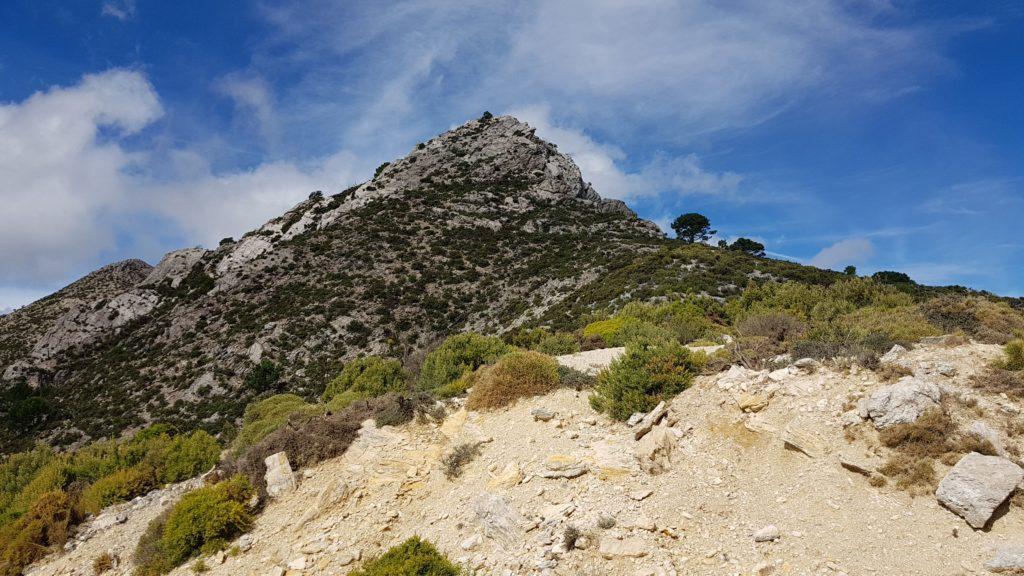 Collado del Chaparralejo y Vista de la Cumbre Este