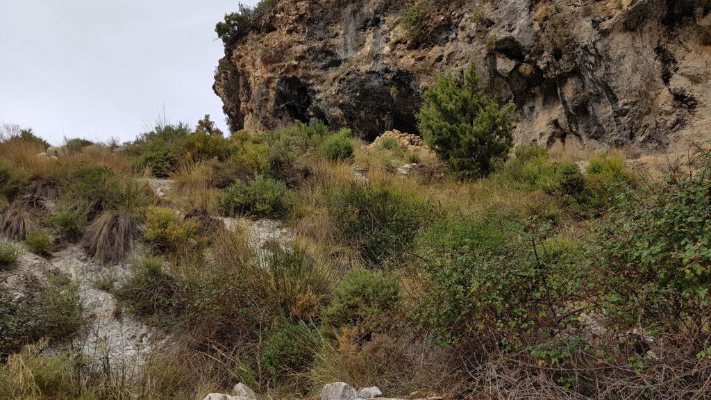 Barranco de las Cuevas. Cuevas del Puerto