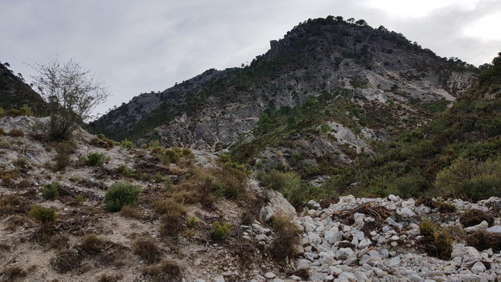 Enlace del Barranco de las Cuevas con la pista