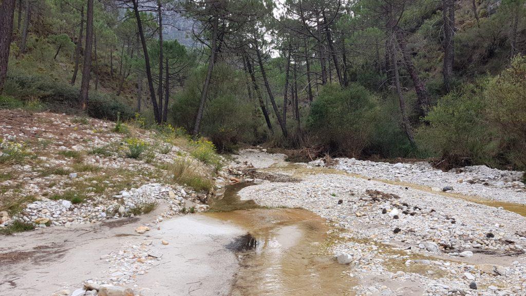 Arroyo de la Venta