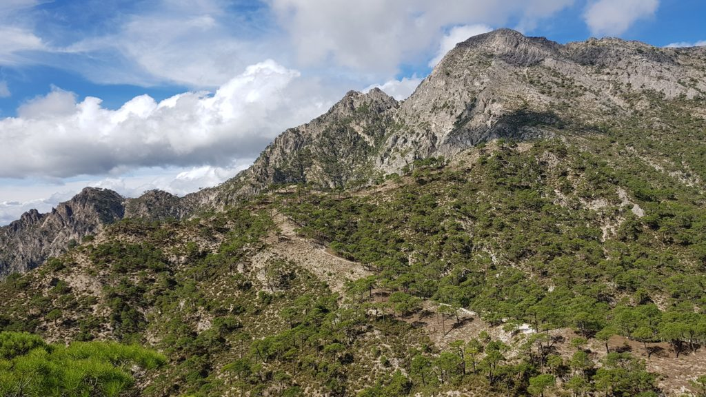 Vistas al Lucero y al Cerro del Caracolillo desde el Atajo