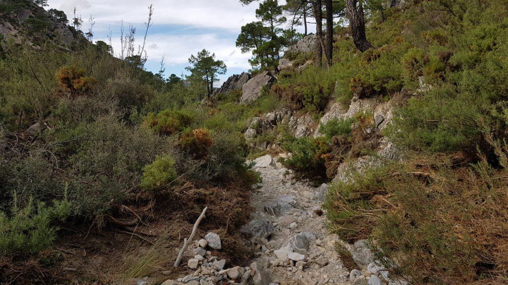 Inicio descenso Barranco de las Cuevas