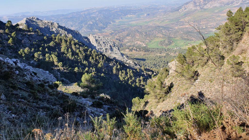 Cañada del Arroyo de las Doncellas