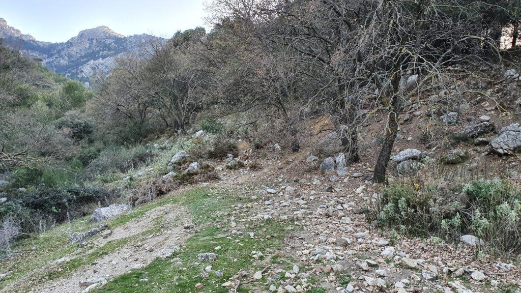 Arroyo de las Doncellas
