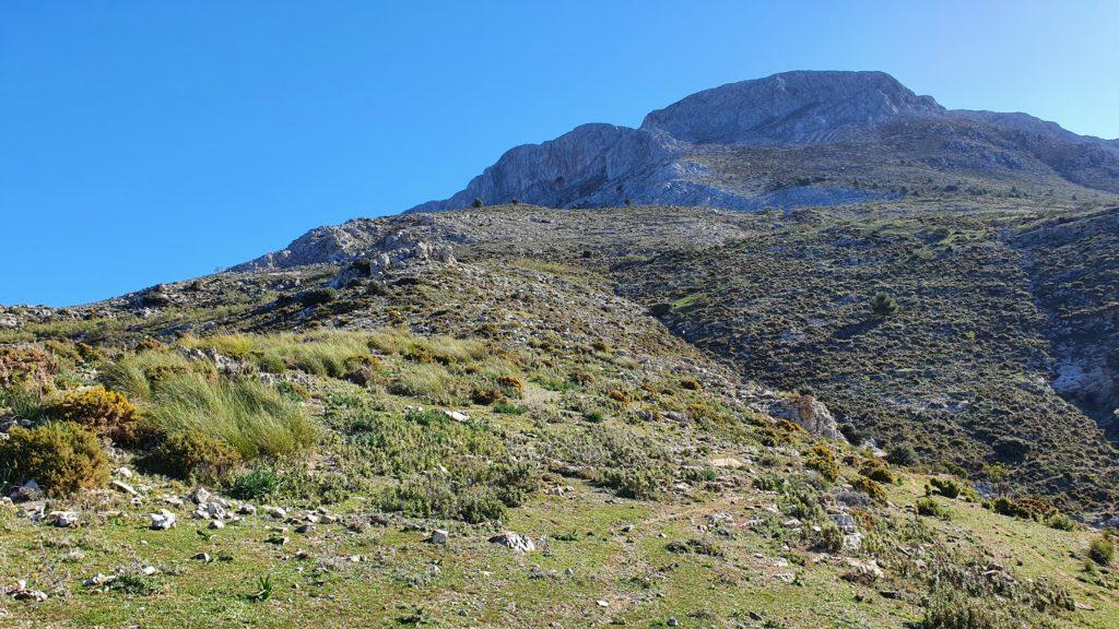 Cañada del Pasito