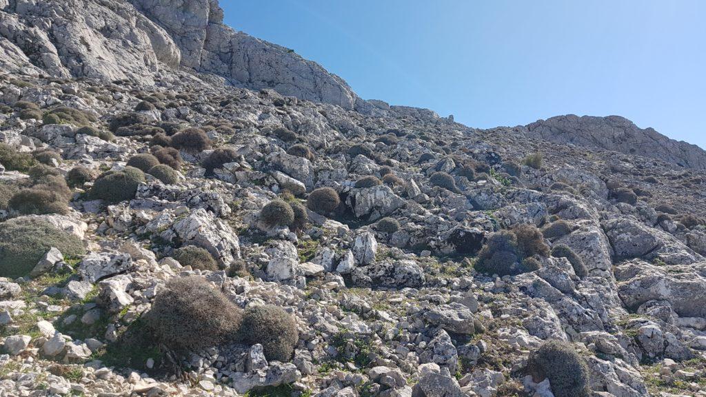 Cañada del Perelló. Subiendo hacia el collado