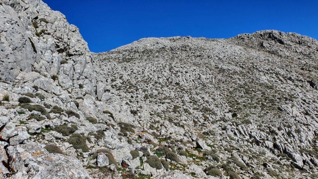 Rodeando la Cañada del Encinar