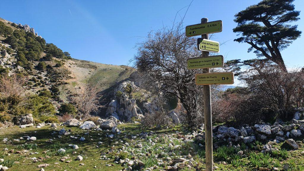 Collado de la Cueva de los Lobos. Vista a la Fuentezuela