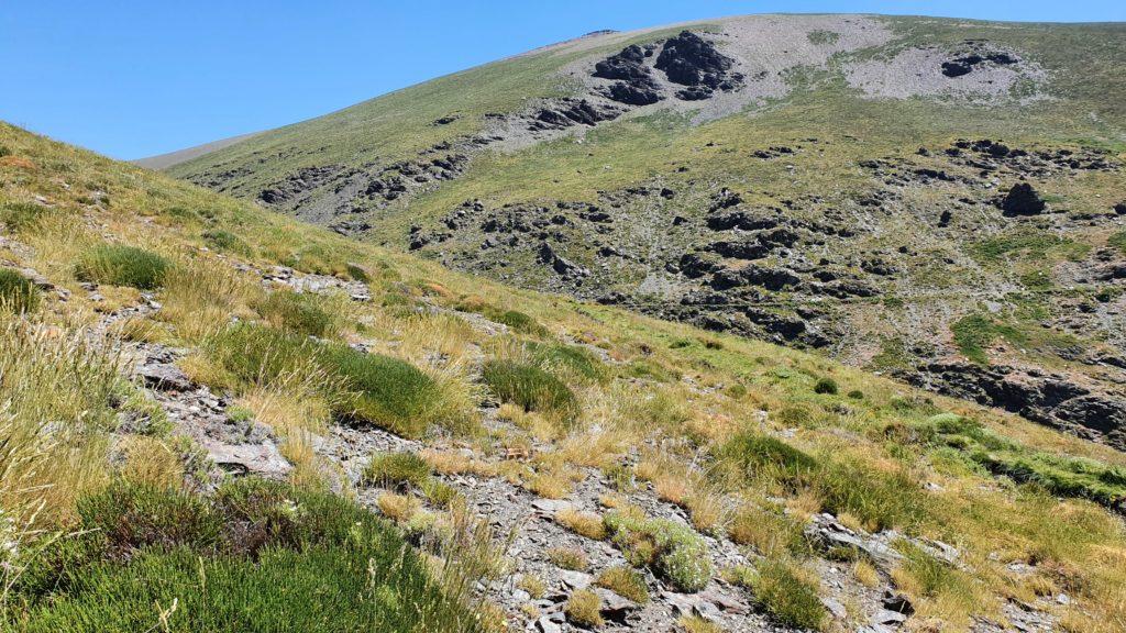 Cañada Real de Vacares, vista atrás