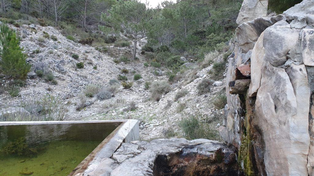 Fuente Borriquero y Barranco de Borriqueros