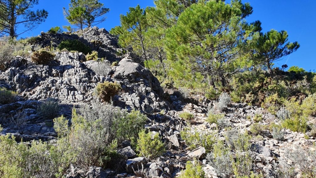 Descenso brusco por grupo rocoso. Vista atrás desde abajo