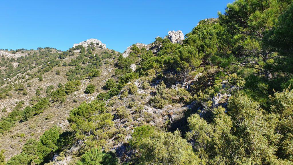 Sendero al Cerro de la Atalaya. Parte inicial