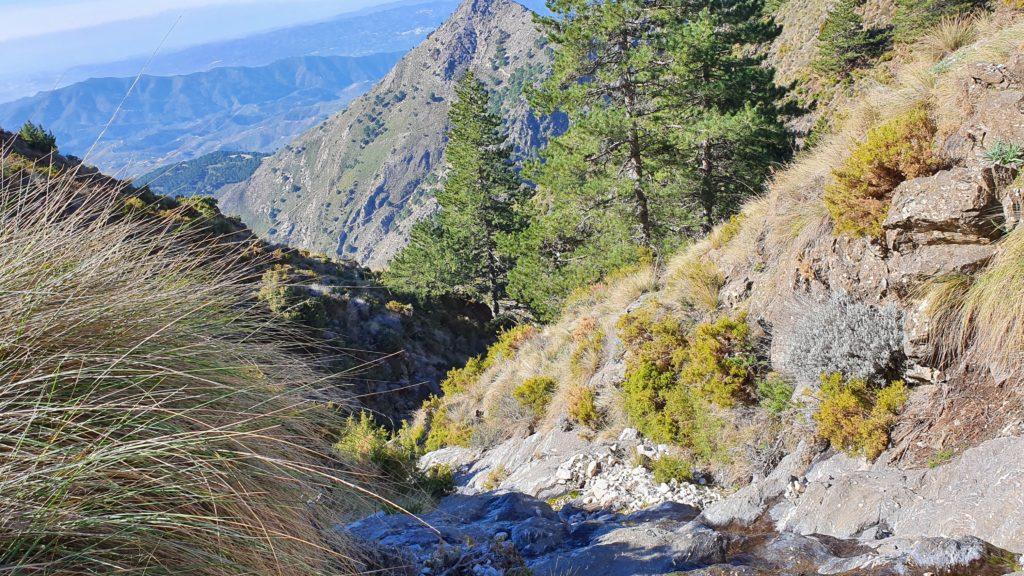 Barranco del Río Encina. Segundo afluente