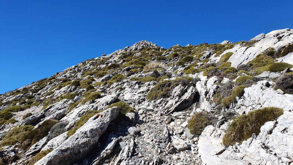 Subiendo a la cresta rocosa