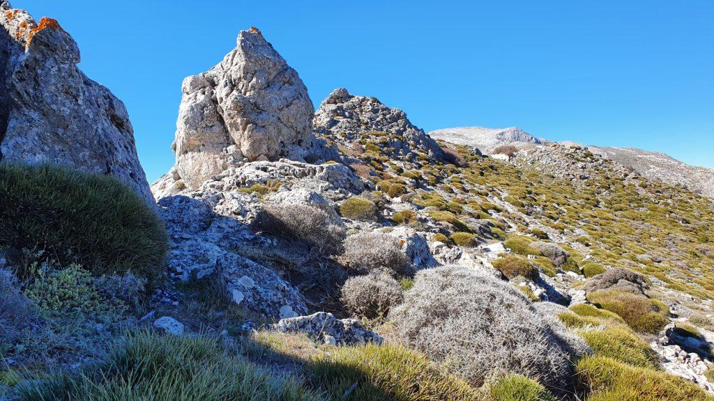 En la cresta rocosa