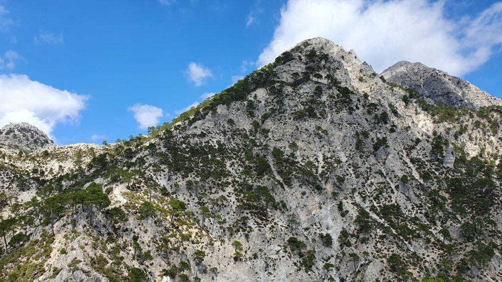 Vista al Cerro de la Venta de Panaderos y al Lucero