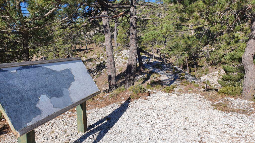 Sendero al Cerro del Caracolillo