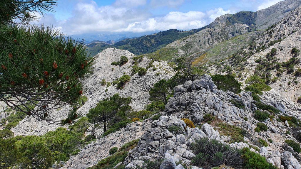 Descenso de Cerro Cabañeros